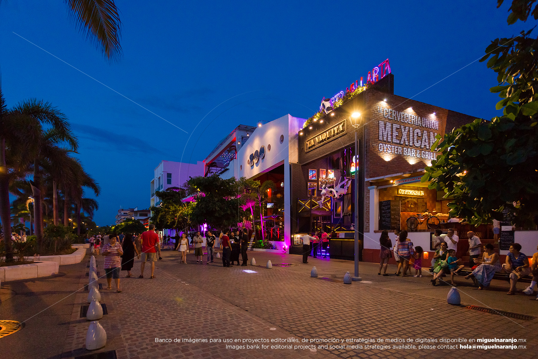 Puerto Vallarta's night life